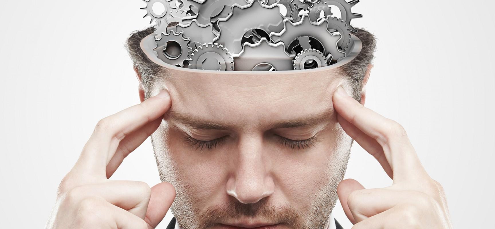 Alimentação balanceada melhora o desempenho do cérebro